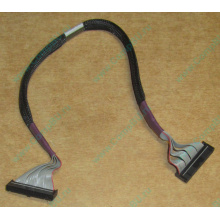 FDD-кабель HP 271946-006 для HP ML370 G3 G4 (Нефтеюганск)